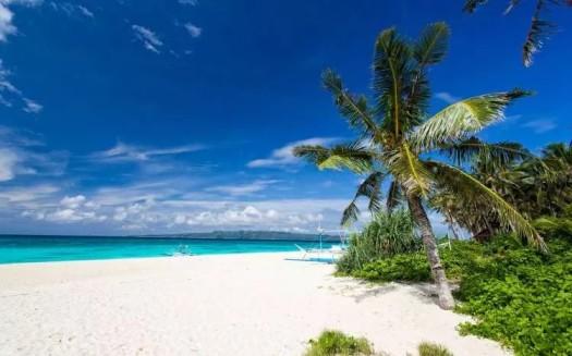 חוף פוקה בורקאי