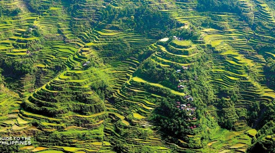 טרסות האורז בבנאווי - בנאווי