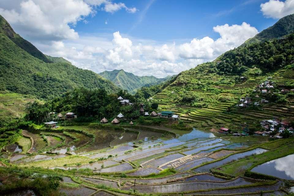 טרסות האורז בנאווי צפון לוזון
